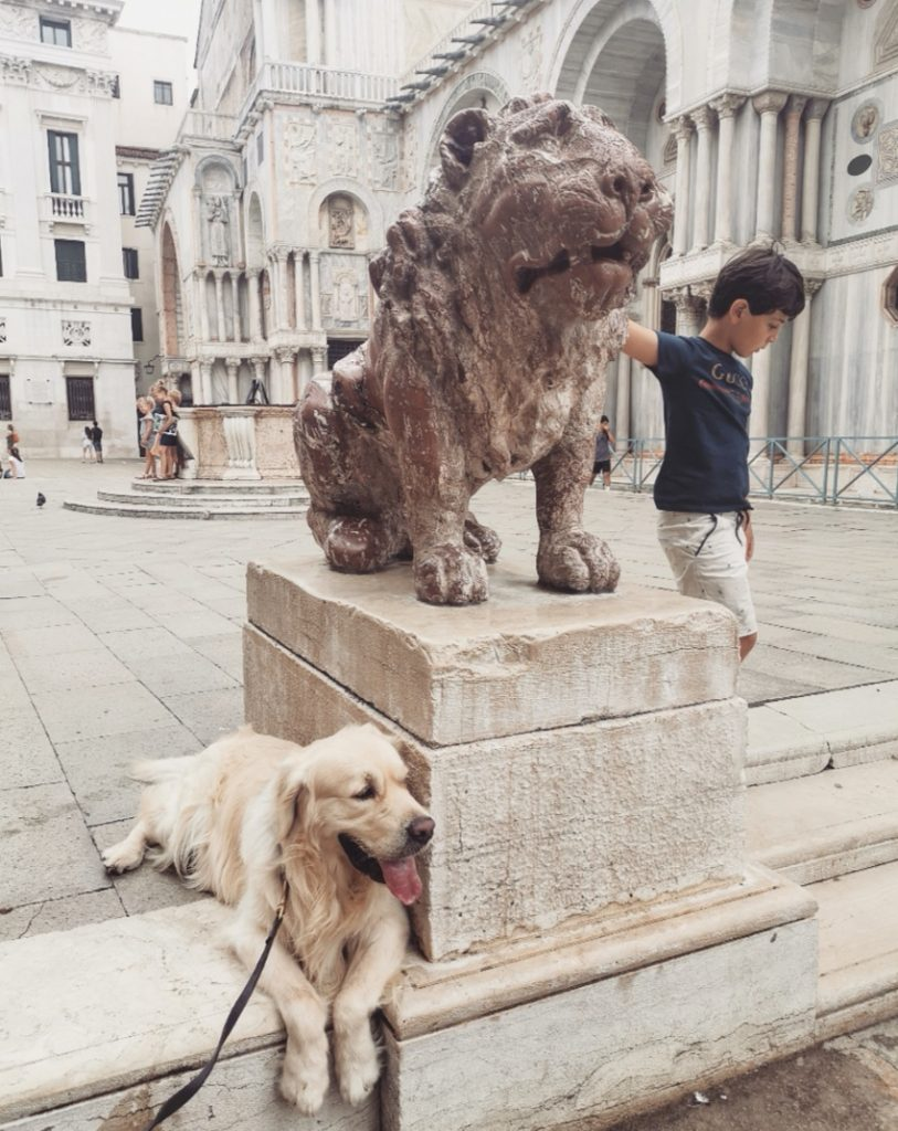 cane in vacanza a venezia, pet friendly , viaggi di famiglia